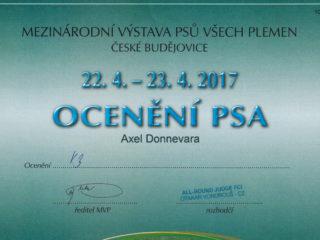Mezinárodní výstava České Budějovice