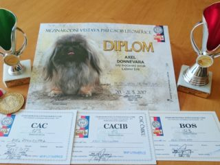 Mezinárodní výstava psů CACIB Litoměřice