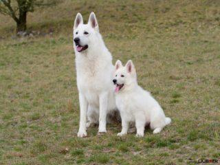 Daimee + Axel