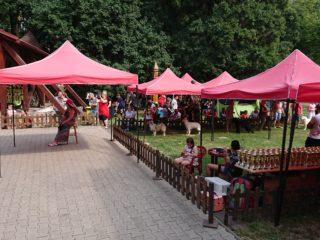 Dogfestival Veľká Ida