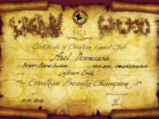 Diplomy, šampionáty AXEL Donnevara