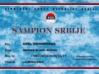 Champion Serbia