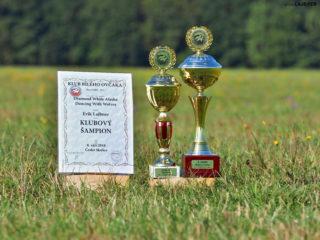 Klubová výstava Česká Skalice 2018 + Svod mladých
