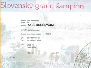 Grand Champion Slovakia