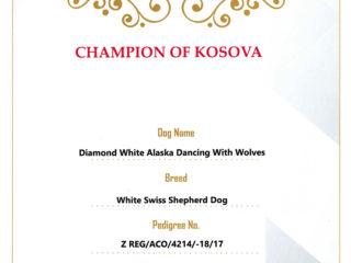 Champion RKS