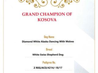 Grand Champion RKS