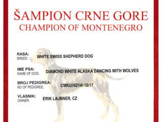 Champion MNE