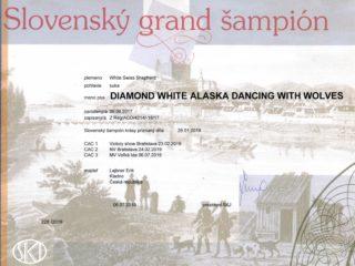 Grand champion SK