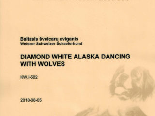 DIAMOND WHITE ALASKA Dancing With Wolves