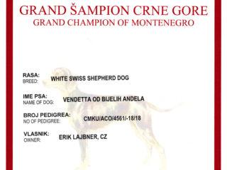 Grand champion MNE