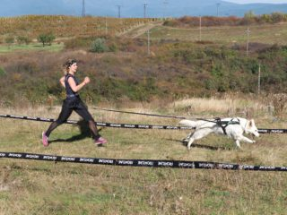 HDR Wild race – Eger (HU)