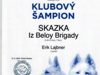 SKAZKA Iz Beloy Brigady